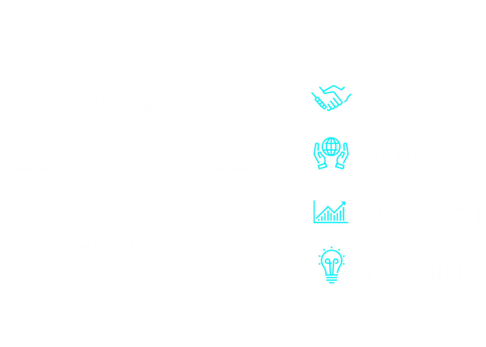 Four components of the AI Summit Series